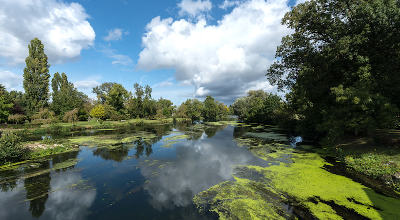 Naviguer en pleine nature en Charente