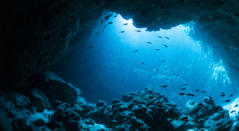 Fonds marins de la Grotte Bleue